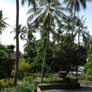 Kuta - Bali