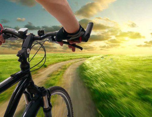 Radeln oder E-Biken im Schönbuch